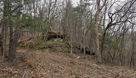 40 Acres Taylor Hollow Rd Blue River Wi 53518 - SOLD,  Buyer's Agent
