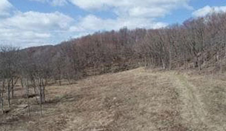 44 Acres Lake Rd Hillpoint WI 53937 - SOLD,  Buyer's Agent